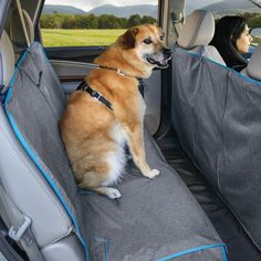 Dog Hammock, Bench Seat Covers, Dog Water Bottle, Pet Camera, Interactive Dog Toys, Dog Car Seats, Commute To Work, Dog Activities, Dog Travel