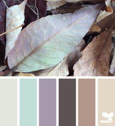 fallen hues