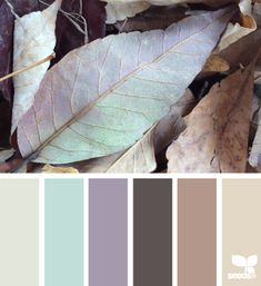 Fallen Hues - http://design-seeds.com/index.php/home/entry/fallen-hues13