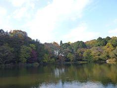 Shakujii-koen(Garden) Tokyo