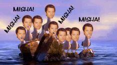Finding Nemo Seagulls / Mishapocalypse