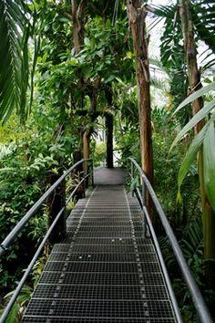 Drieklimatenkas   Hortus Botanicus   Amsterdam, the Netherlands