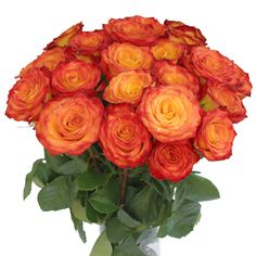 FiftyFlowers.com - Circus Bicolor Yellow with Red Rose