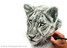 Whiskers!! Ummm difficult things to draw around but hanging in there that it works  https://www.facebook.com/pages/Richard-Symonds-Artist/6775177793?fref=photo