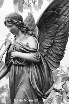 Garden Angel Black and White Fine Art Photograph Wall Art Angel Wings Wall Art, Angel Art, Angel Sculpture, Sculpture Art, Sculptures, Ancient Greek Sculpture, Angel Tattoo Designs, Garden Angels, Angel Statues