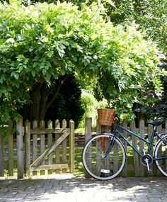 Bicycle and the country side. Country Life, Country Living, The Secret Garden, Exterior, Garden Cottage, English Countryside, Garden Gates, Dream Garden, Farm Life