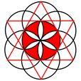 Flower of life flower of life & sacred geometry сакральная г Flower Of Life Pattern, Life Flower, Symmetry Design, Sacred Geometry Art, Geometry Tattoo, Fibonacci Spiral, Flower Tattoo Back, Seed Of Life, Religious Symbols