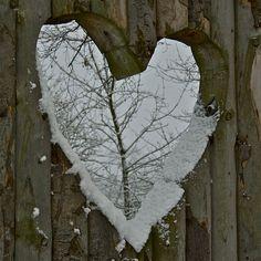 snowy heart in fence