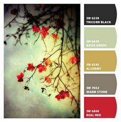 Created this palette. Kind of love it.