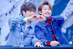 Seungmin and Felix Stray Kids Felix Stray Kids, Stray Kids Seungmin, Lee Min Ho, Minho, Baby Photos, Couple Photos, Fandom, Kid Memes, Wattpad