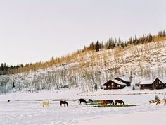 Peaceful Colorado view.  On vacation looking at horses, snow, mountains, and cabins....life is good @VistaVerdeRanch