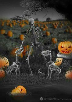 The Art of Dan Verkys: Photo Halloween Signs, Halloween Pictures, Spooky Halloween, Spirit Halloween, Holidays Halloween, Vintage Halloween, Happy Halloween, Halloween Stuff, Crane
