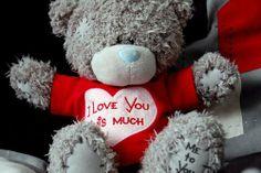teddy roosevelt valentine day