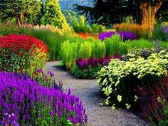Resultado de imagem para my dream garden