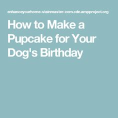 How to Make a Pupcake for Your Dog's Birthday