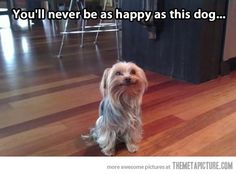 The face of pure happiness…