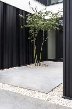 Inspiratie tuinen | Tuinarchitectuur Ken Verelst Outdoor Landscaping, Outdoor Decor, Modern Landscaping, Minimalist Garden, Garden Entrance, Home Building Design, Terrace Garden, Small Gardens, Garden Inspiration