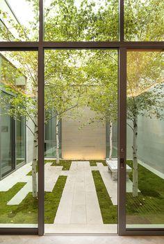 minimalist courtyard (coen + partners landscape architects