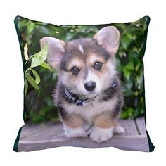 camping theme pajamas womens - TSlook Blankets Funny Adorable Corgi Comfy Funny Bed Blanket * For more information, visit image link. (This is an affiliate link) Camping Humor, Camping Theme, Funny Camping Pictures, Camping Checklist, Camping Tips, Custom Pillows, Keep It Cleaner, Throw Pillows, Corgis