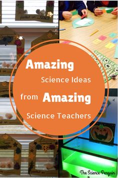 Amazing Science Ideas from Amazing Teachers - The Science Penguin