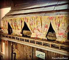 Fresh Eggs Daily®: Nesting Box Curtains - Not as Frivolous as They May Seem