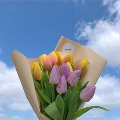 Nature Aesthetic, Flower Aesthetic, Aesthetic Room Decor, Tulips Flowers, Beautiful Flowers, Vase Fillers, Flowering Trees, Aesthetic Pictures, Rose