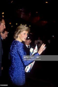 Princess Of Wales, Princess Diana, Barbican, Photo Pin, Lady Diana Spencer, Kardashian, February, London, Woman