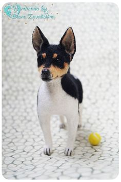 Rat Terrier/ Rattie/ Felted toy/ Realistic animal/Needle