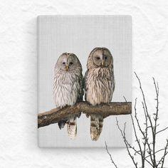 Cute Owls Ural Owls Nocturnal Bird Print Love by TrendingArtPrints