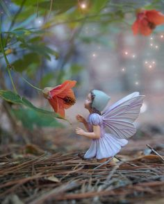 Flower Fairy Photography, Fine Art Fantasy Photo, Baby Nursery Princess Girl Magical Pastel Bedroom Wall Art Green Ornage Purple. $20.00, via Etsy.