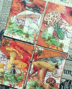 My ATC Set - Mushrooms...  My journey through the Scrapbookworld...: *ATC Sets - Paris, Mushrooms, Cats, Foil ATCs - Frog King, Sunny Theme*