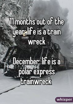 11 months out of the year: life is a train wreck December: life is a polar…