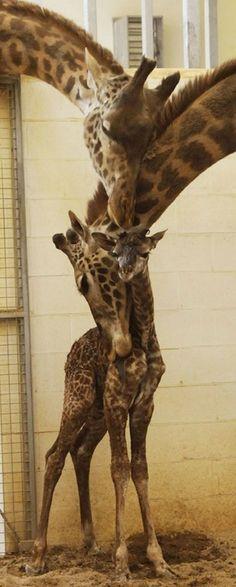 family hug :-)