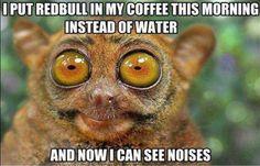 Ok, I'm Awake! Little Friday Humor :D