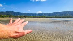 The Hand at Palm Cove