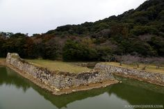 Japanese castles I've visited: #21 Hagi Castle in Yamaguchi Prefecture. Only ruins are left, but there were a lot of stray cats, so I really enjoyed my visit there.