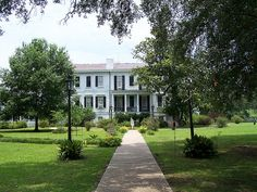 A side view of Nottoway Plantation, or Montpellier Plantation in my novel.