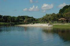 The Hammocks Lakes in Kendall - mini beach with coral rocks, trees Hammocks, Lakes, Kendall, Places To See, Miami, Rocks, Coral, River, Beach