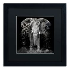 'The Disappearance of the Elephant' by Erik Brede Framed Graphic Art