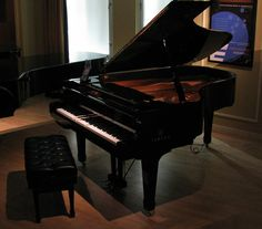 I'm not usually much of a fan of Yamaha, but the Disklavier wins for all kinds of awesome.  =)