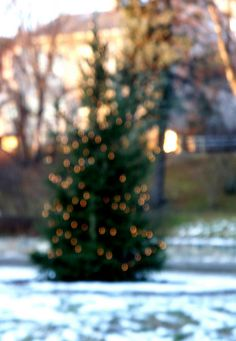 Country Christmas, Christmas Time, Xmas, Holiday, Winter Is Here, Cabins In The Woods, Winter Scenes, Ocd, Tis The Season