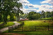 Custom - Country - The pasture  by Mike Savad