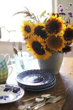 sunflowers will be in my homeeee