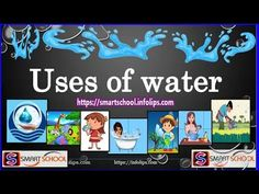 Uses of water for kids by Smart School | What are the uses of water | Im... Smart School, School S, Importance Of Water, Learning Sites, The Creator, Education, Kids, Clever School, Young Children