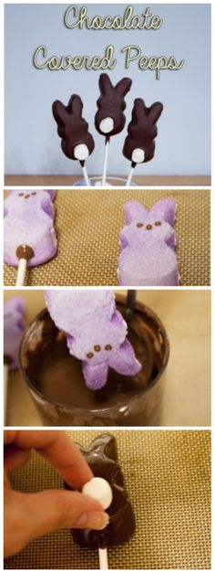 Chocolate covered peeps that are easy to make and perfect for easter!