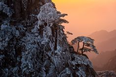 Freezing fog and rain creates winter dramatic landscape at Huangshan Mountain the most beautiful mountain in China.