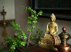 Peace... | House Interior Design