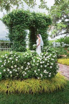 """Fall In Love Again And Again With Jubilation™ Gardenia. A garden should be a feast for the senses, as Linda Vater can attest. Here, she gives you many reasons to say """"I Do"""" to Jubilation Gardenia. It will add fragrance as well as beauty to your landscape Spring Landscape, Garden Landscape Design, Modern Landscaping, Landscaping Plants, Small Front Gardens, Garden Modern, Modern Gardens, Formal Gardens, Pallets Garden"""