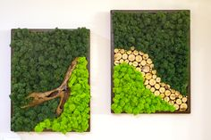 Moss Wall Art, Moss Art, Moss Graffiti, Rock Wall, Inspiration Wall, Wall Patterns, Greenery, Wall Decor, Crafty