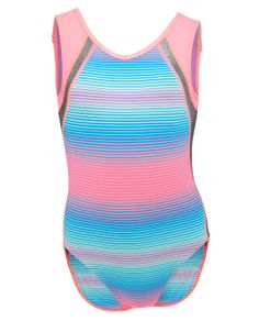 One of my 8 year old gymnasts has this leotard - way cuter in real life. I love love.